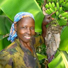 Woman in Kenya with Bananas participating in a Climate Change Courses project: Project Design, Funding, Project Management